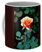 Pinkish Peach  Coffee Mug