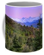 Pinsapar At Sierra Nevada Coffee Mug
