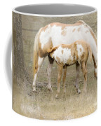 Pinto Mare And Filly Coffee Mug