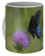 Pipevine Swallowtail Visiting Field Thistle Din158 Coffee Mug