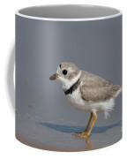 Piping Plover Charadrius Melodus Coffee Mug