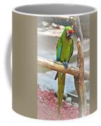 Pirate's Pal Coffee Mug