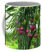 Pitaya Fruit Trees Coffee Mug