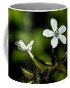Pixie Flower Coffee Mug