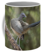 Plain Chachalaca Coffee Mug