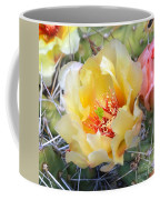 Plains Prickly Pear Flower Coffee Mug