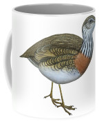 Plains Wanderer  Coffee Mug by Anonymous