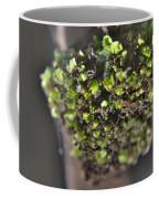 Plant Mutation Coffee Mug