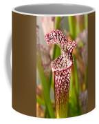 Plant - Pretty As A Pitcher Plant Coffee Mug