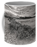 Plants On The Alvord Desert Coffee Mug