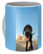 Playful Dog Closeup Coffee Mug