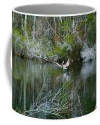 Playful Pelican Coffee Mug
