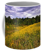 Pleasant Meadow Foreboding Sky Coffee Mug