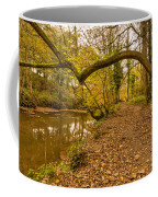 Plessey Woods Riverside Footpath Coffee Mug