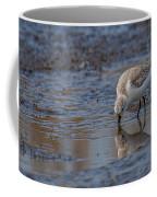 Plover Coffee Mug