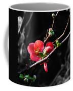 Plum Blossom 3 Coffee Mug