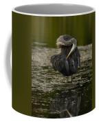 Plumage Perfection Coffee Mug
