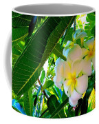 Plumeria Beauty Coffee Mug