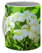 Plumeria Greeting The Morning Coffee Mug