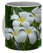 Plumeria In The Rain Coffee Mug