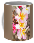 Plumerias Of Paradise 4 Coffee Mug