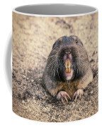 Pocket Gopher Chatting Coffee Mug