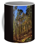 Pocono Trees Coffee Mug