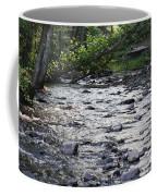 Poconos Gentle Stream Coffee Mug