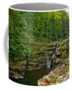Poconos Ledges Waterfall Coffee Mug