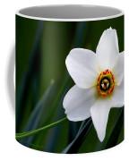 Poet's Daffodil Coffee Mug
