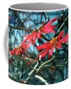Poinsettia Africa Coffee Mug