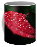 Poinsettia Leaf With Water Droplets Coffee Mug
