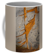 Point Lobos Abstract 13 Coffee Mug