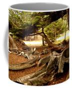 Point Lobos Whalers Cove Whale Bones Coffee Mug