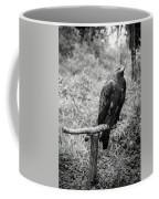 Pointing The Next Prey Coffee Mug