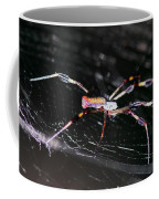 Points Of Contact - Spider - Orb Weaver Coffee Mug