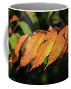 Poison Sumac Golden Kickoff To Fall Colors Coffee Mug