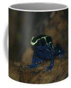 Poisonous Frog 02 Coffee Mug
