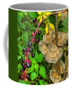 Poke And Bracket Fungi Coffee Mug
