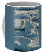 Polar Bear And Cub Coffee Mug