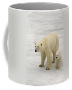 Polar Bear With Cub Coffee Mug