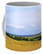 Polish Field Coffee Mug