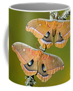 Polyphemus Moths Coffee Mug
