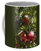 Pomegranate Tree  Coffee Mug