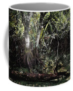 Pond Apple-1 Coffee Mug