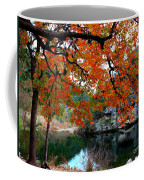 Fall At Lost Maples State Natural Area Coffee Mug