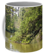 Pond At Norfolk Botanical Garden 10 Coffee Mug