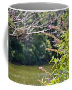 Pond At Norfolk Botanical Garden 12 Coffee Mug
