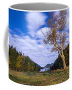 Pond House Views Coffee Mug