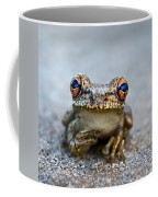 Pondering Frog Coffee Mug by Laura Fasulo